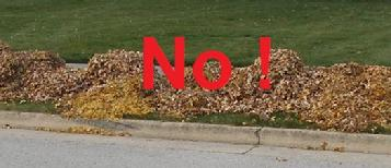 Curbside leaf pick-up program guidelines